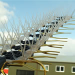 TV Aerial Bird Spikes Kit